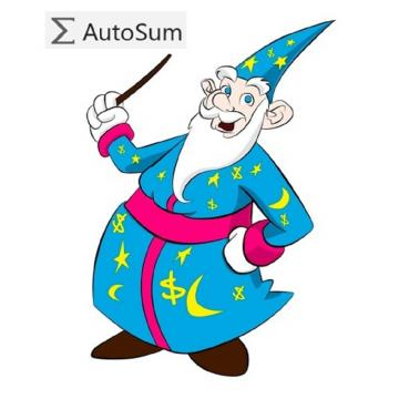 Excel's AutoSum Wizard saves time but you must check results carefully